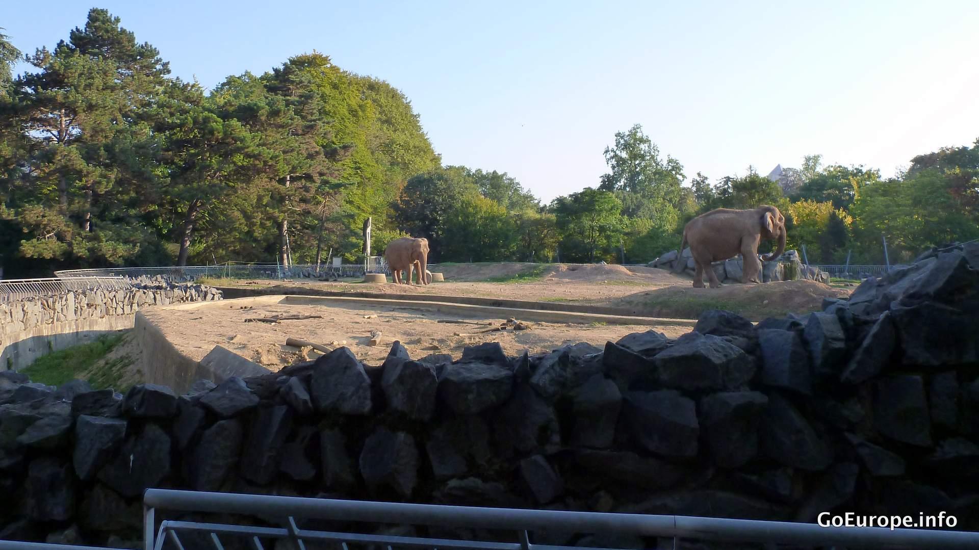 Parc de la Tete d'Or - The park with a mini zoo.